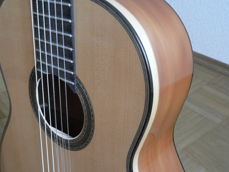 Gitarre Zarge
